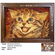 """Кот """"ТКТ-16"""" 20х30 см."""