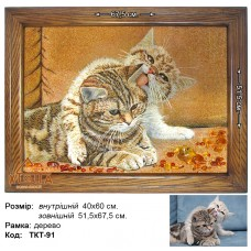 """Кот """"ТКТ-91"""" 40х60 см."""