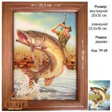 """Риба """"ТР-25"""" 20х30 см. Ціну див. у вкладці Прайс!"""