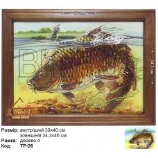"""Риба """"ТР-26"""" 30х40 см. Ціну див. у вкладці Прайс!"""