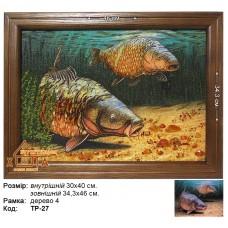 """Риба """"ТР-27"""" 30х40 см. Ціну див. у вкладці Прайс!"""