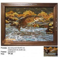 """Риба """"ТР-28"""" 30х40 см. Ціну див. у вкладці Прайс!"""