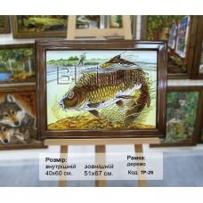 """Риба """"ТР-26"""" 40х60 см. Ціну див. у вкладці Прайс!"""