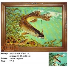 """Риба """"ТР-5"""" 30х40 см. Ціну див. у вкладці Прайс!"""