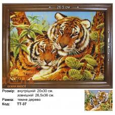 """Тигри """"ТТ-37"""" 20х30 см. Ціну див. у вкладці Прайс!"""