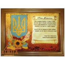 """Символіка України """"СУ-8"""" 30х40 см. Ціну див. у вкладці Прайс!"""