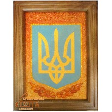 "Символика Украины ""СУ-9"" 20х30 см."