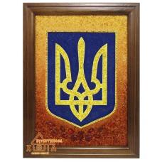 "Символика Украины ""СУ-9"" 30х40см."
