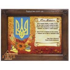 """Символіка України """"СУ-8"""" 20х30  см. Ціну див. у вкладці Прайс!"""
