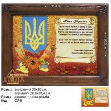 "Символика Украины ""СУ-8"" 20х30 см."