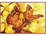 Бабочки - ТМТ