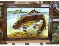 Риби - ТР
