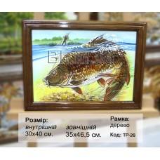 Риба (ТР-26) 30х40 см.