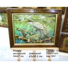 Риба (ТР-7) 34х47 см.