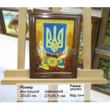 Символіка України (СУ-4) 20х30 см.