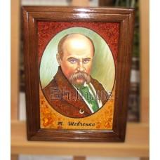 Портрет Тараса Григоровича Шевченка (ВП-6) 20х30 см.