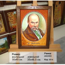 Портрет Тараса Григоровича Шевченка (ВП-6) 30x40 см.